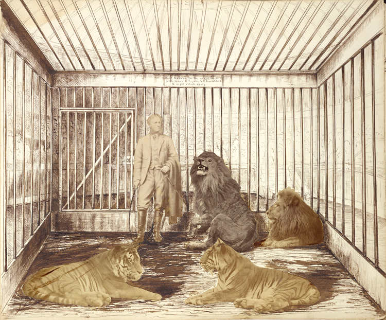 Portrait of a Man with Lions