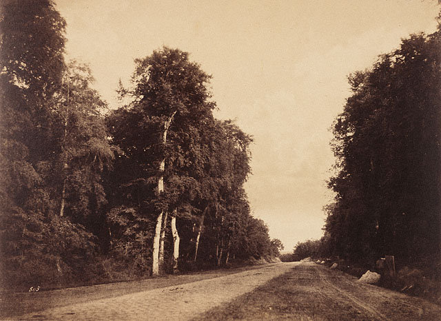 The Road to Chailly, Fontainebleau