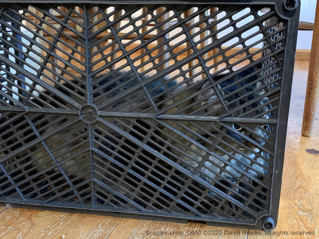 Scooter-crate_0660
