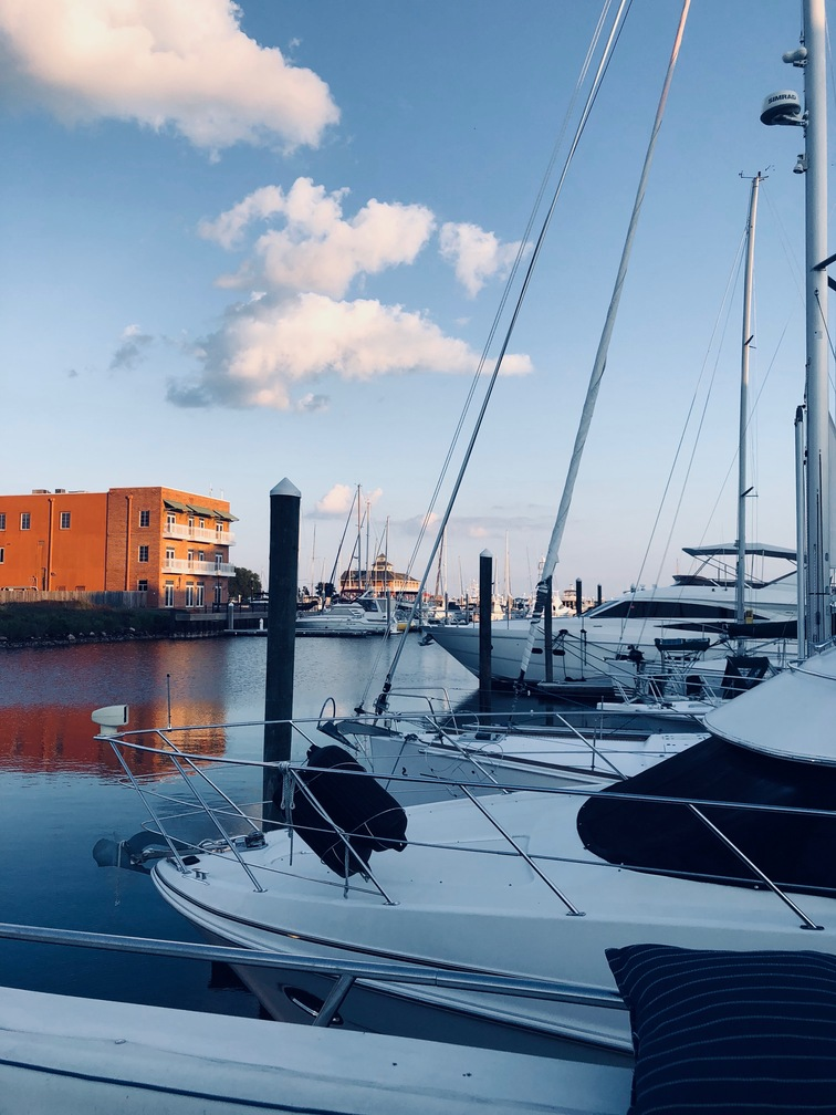 Marina in Pensacola, Palafox Harbor