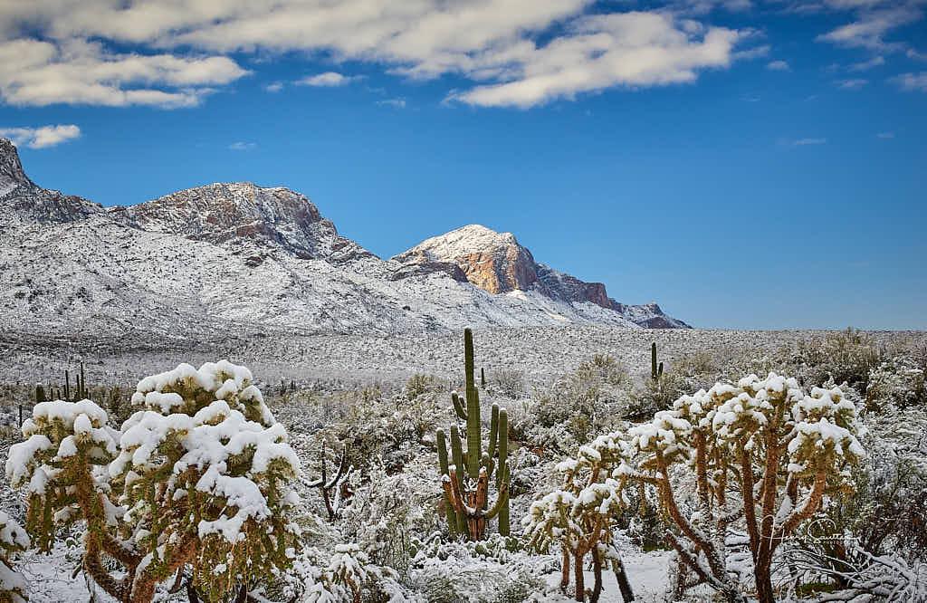 Catalina Snowfall
