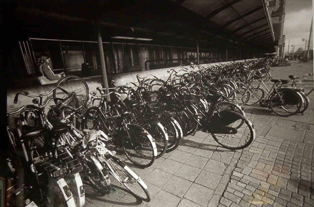 Bicycle Purgatory