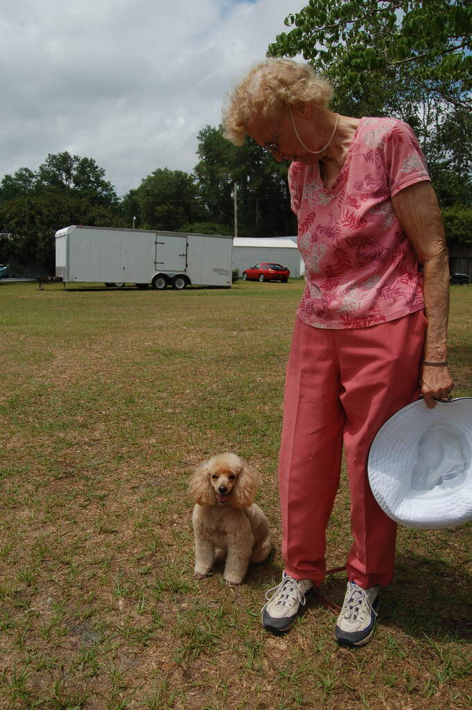 an elderly woman looking down at her apricot colored toy poodle