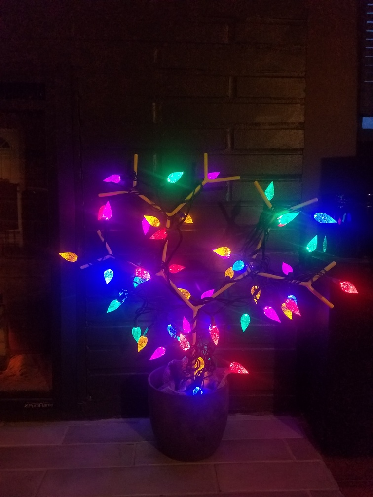 jewelry tree with lights