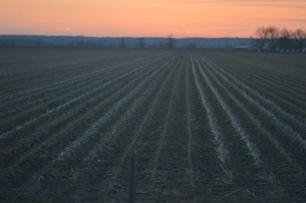 Missouri Field at Sunset