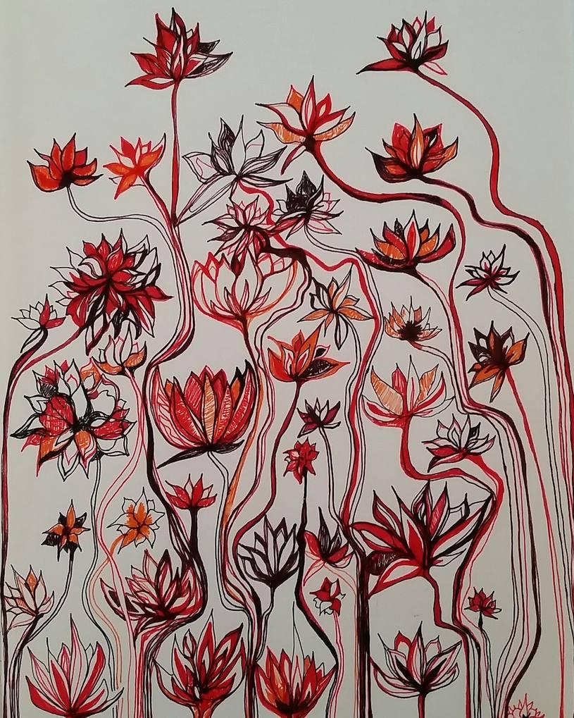 lotus flowers and their stalks