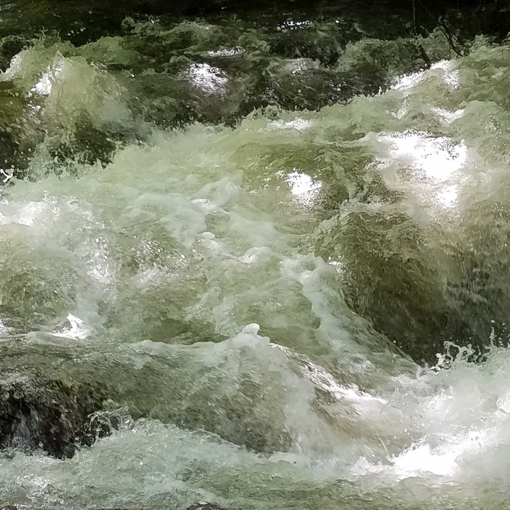 Tumultuous Water, Tumultuous Year