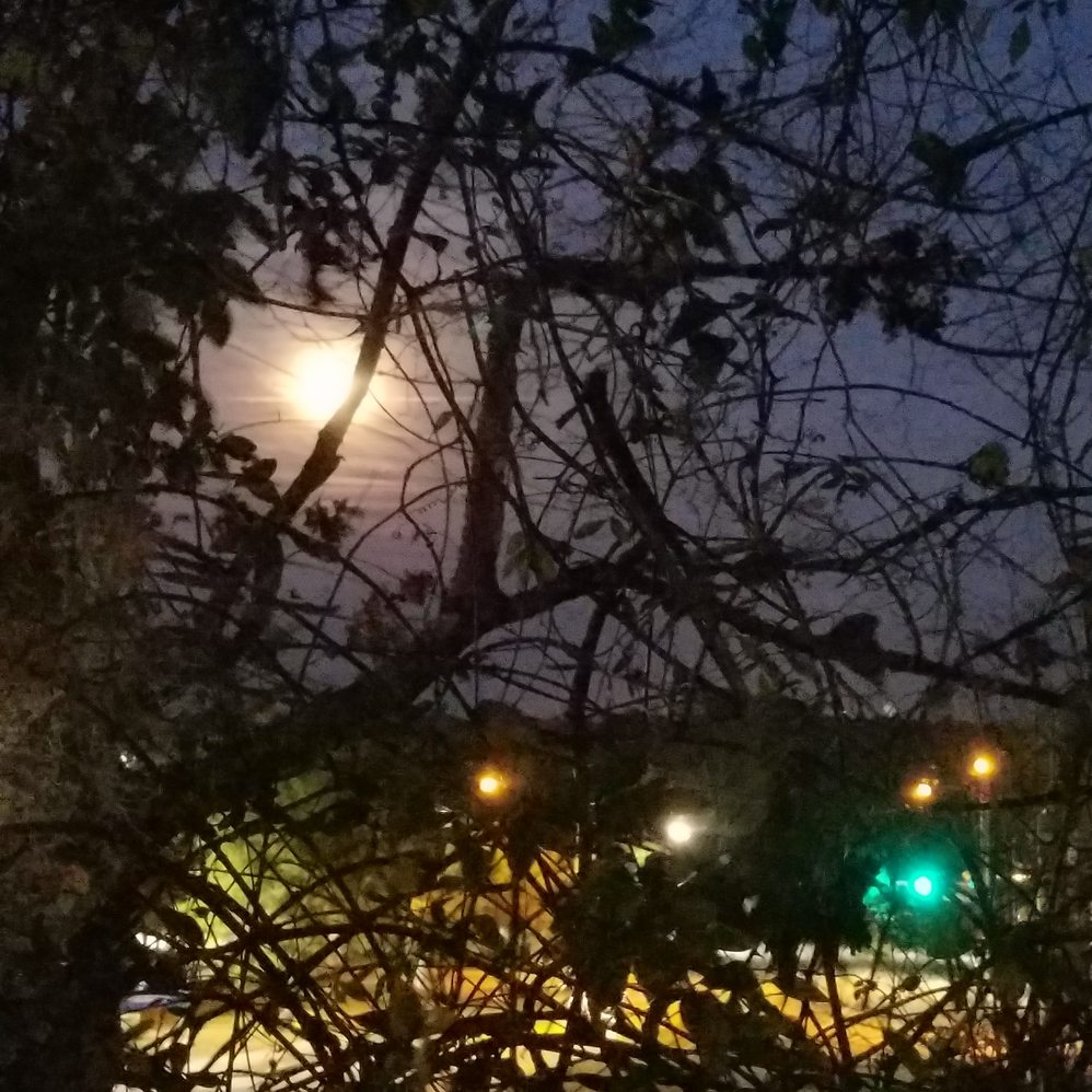 jan 1 moonrise
