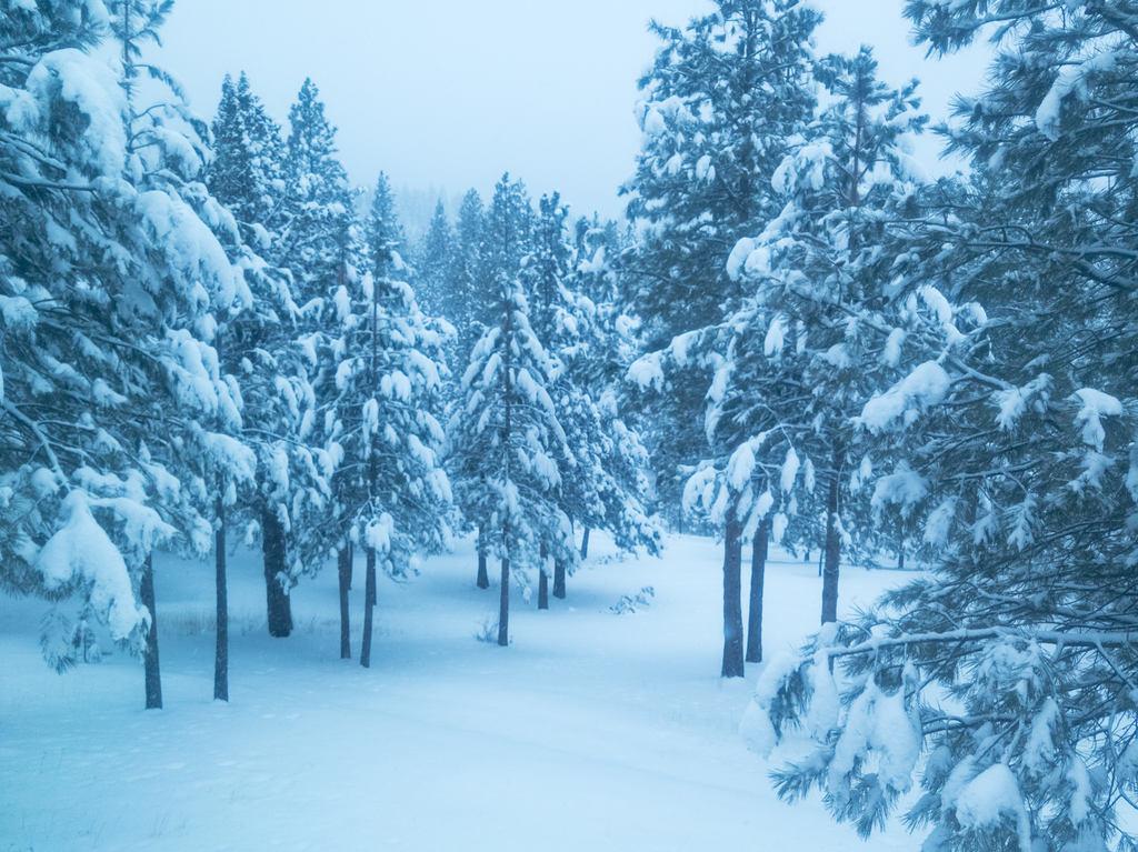 Eastern Oregon Snowstorm