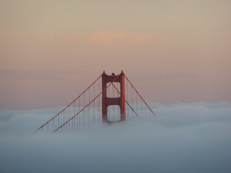 Golden Gate Bridge emerges