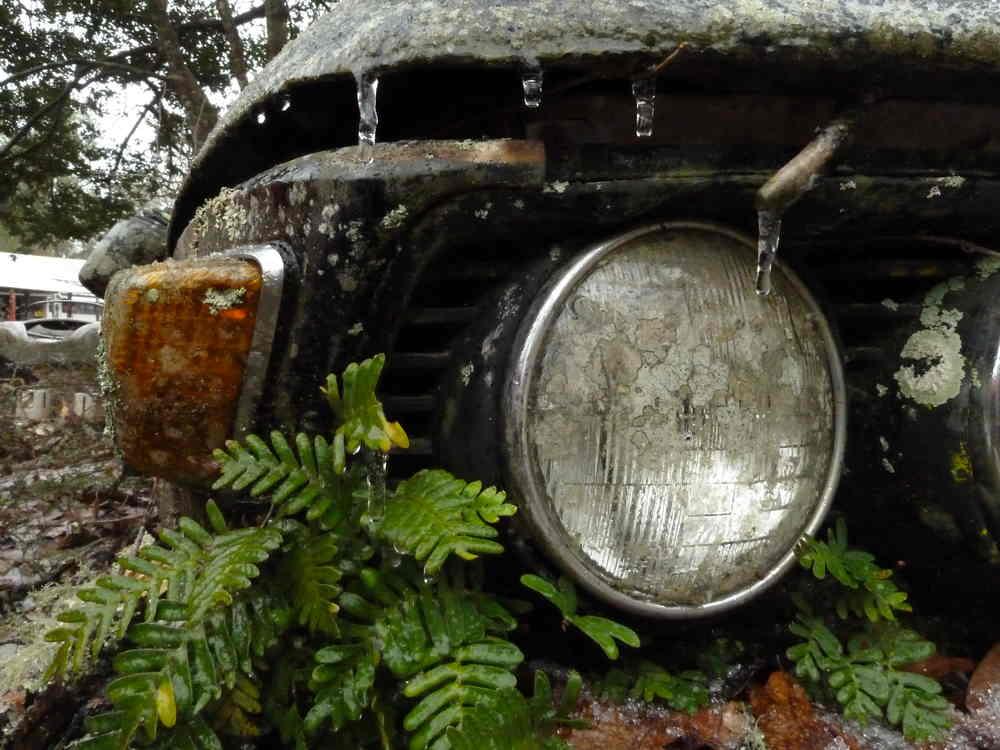 Cold BMW