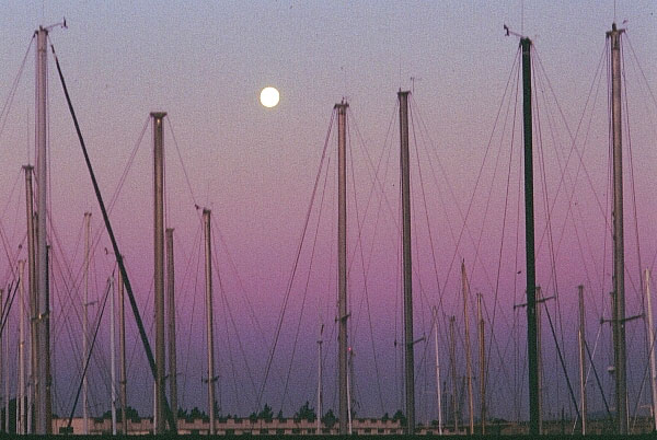 Moonrise over the Marina