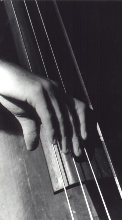 Hand playing Bass