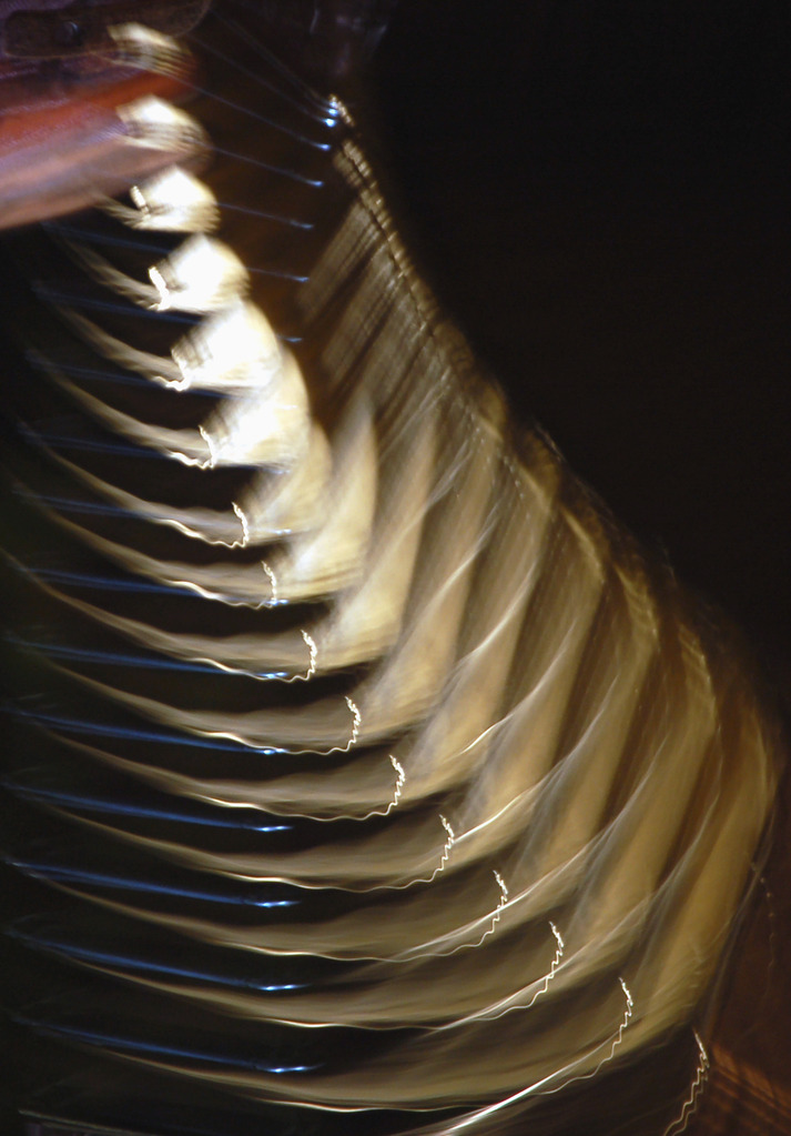 light reflects from an accordian