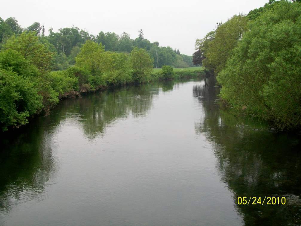 A View Down the River