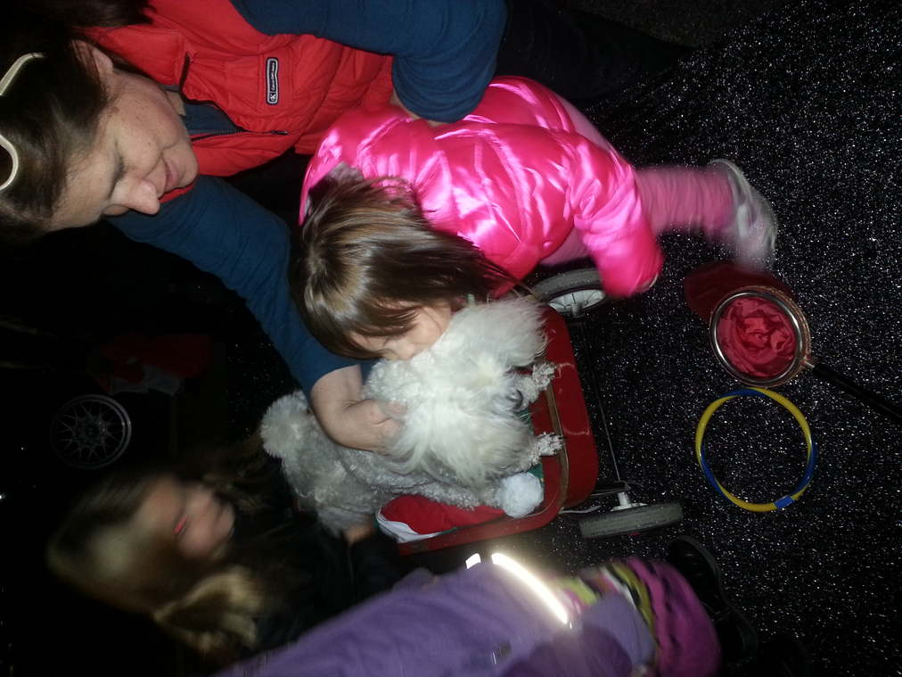 Santa's Enchanted Forest 2001402