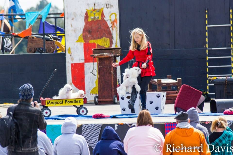 Performing at Renaissance Faire