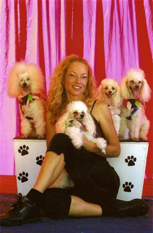 Magical Poodles