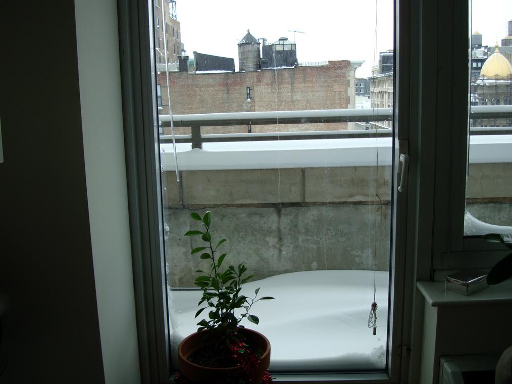 NYC Snow at home
