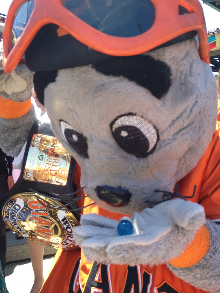 Lou Seal, the mascot of the San Francisco Giants receives one blue marble.