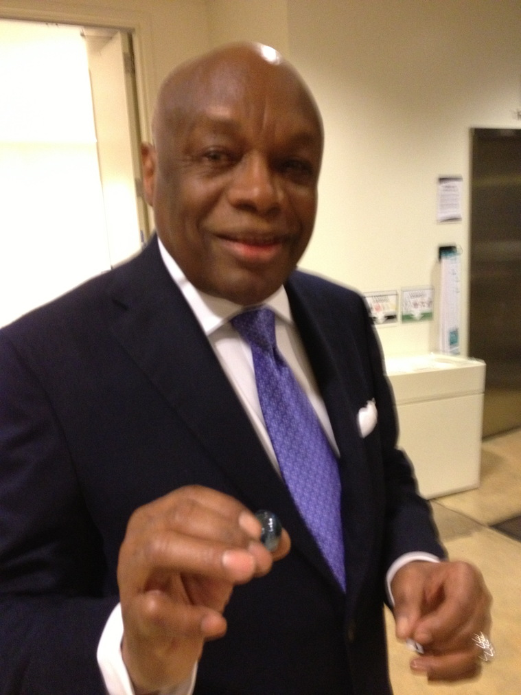 The Blue Marbles Project: Willie Brown (2013)