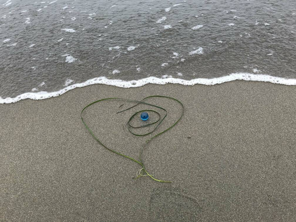 wethearts Ocean Beach (2021)