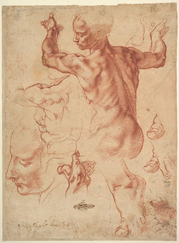 Studies for the Libyan Sibyl (recto)